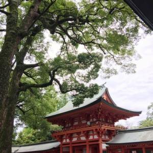 龍神見沼様のチャネリングメッセージ:8月30日大宮氷川神社ツアーに向けて