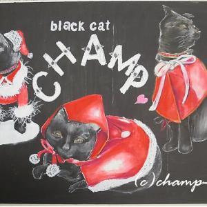 猫のためのサンタ服