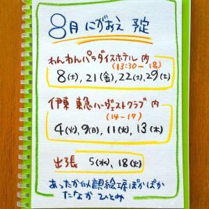 夏の予定(*´∀`)