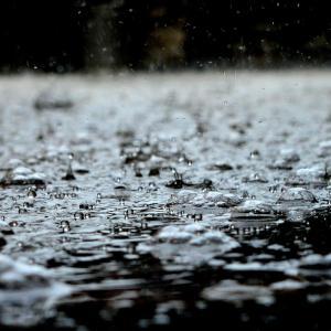 琵琶湖は雨