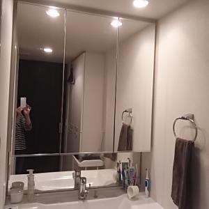【掃除】鏡の拭き掃除と洗濯機の排水口掃除