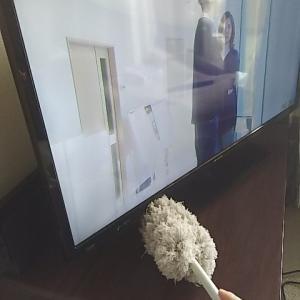 【掃除】テレビ周辺ほこり取り