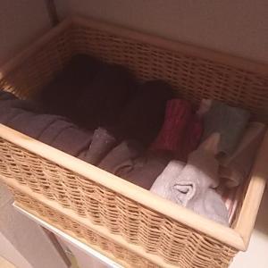 【収納】ストッキング、タイツ、靴下の収納と毛玉取り