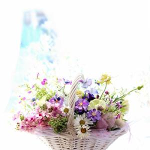 春の小花で ♪~  ホワイトバスケットアレンジ      ~kanon~
