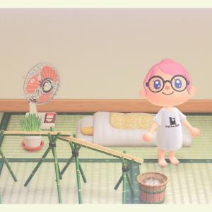 【あつ森】カイゾーとリサ再び&凪のお暇