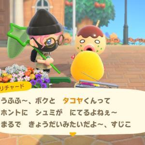 【あつ森】ぼんやり同士・タコヤ&リチャード