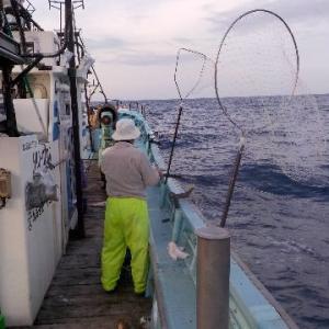 船釣り  ボロボロ
