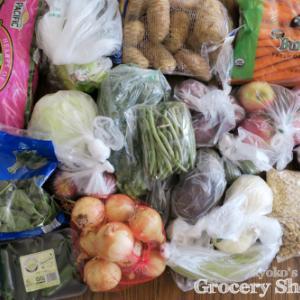 週1もとい3週間に1回の食材まとめ買いと献立(2-15)- 21 Days