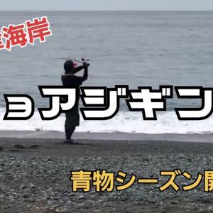 西湘サーフショアジギングYouTubeにアップしました!