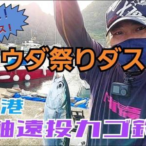 静浦でソウダガツオ爆釣 ~YouTubeにアップしました!