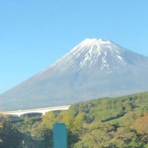千葉から浜松へ ちんちらでご飯会!