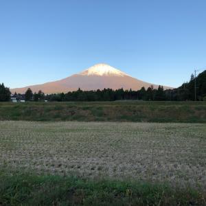 まさかの富士山ドライブ