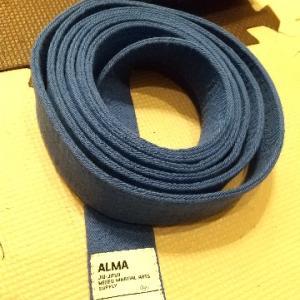 ブラジリアン柔術の青帯に昇格しました。
