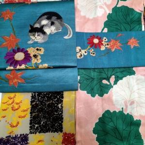 菊の着物に猫の帯