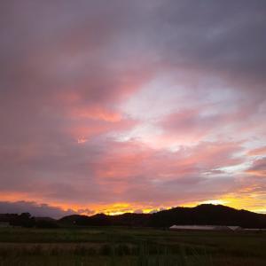 今日の朝ラン☆通常営業と虹