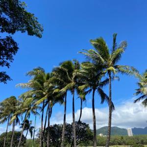 ワイキキお散歩とハワイ生活の良いところ ハワイ