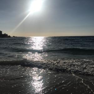 太陽と地の恵み