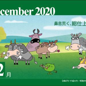 12月、今年を俯瞰してみると、未来の道が明確になるね。