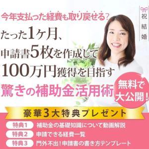 【驚きの助成金活用術】たった1ヶ月で100万円、支払った経費も取り戻せるかも!?