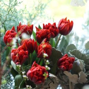 赤と白の小雪の降る花合わせ