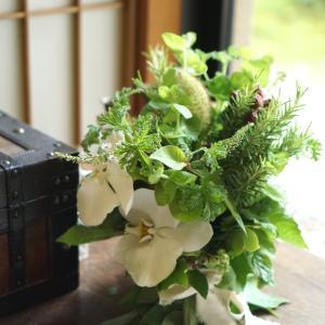 ハーブと蘭のコンポジションスペシャル