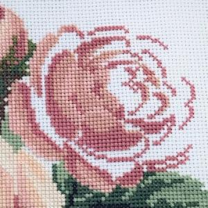 Roses and Lace 8