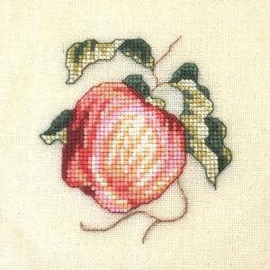Maire さんのりんご、できました。