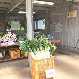 直売のお野菜と、中華街