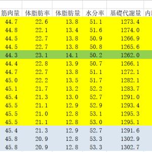 6月の体脂肪率