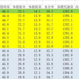 7月の体脂肪率