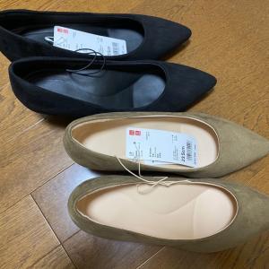 これしかほぼ履いてない。UNIQLOの靴!