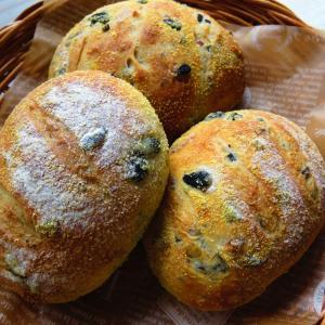 今日のお知らせパンと干支と、テントウムシ