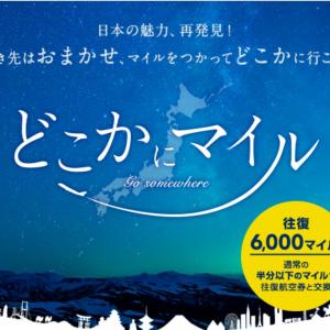 【JAL】大阪発 どこかにマイルで国内旅行