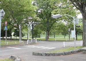 憩いの場、公園