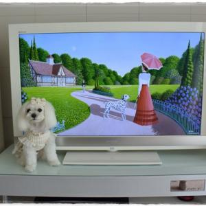 新しいテレビとおやつ探しゲーム