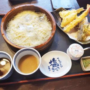 【新潟グルメ】忘れられない美味しさ・小嶋屋のふのり素麺