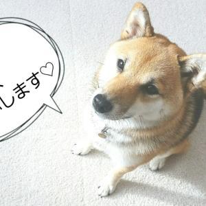 ブログ限定♪