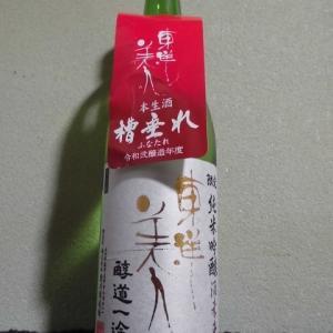 『日本酒』東洋美人 限定純米吟醸 酒未来 醇道一途 槽垂れ 生