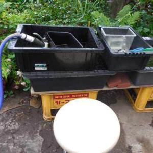 梅雨時の容器洗い苦肉の策