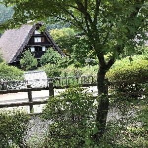 今年の夏は 岐阜県へ・・と。