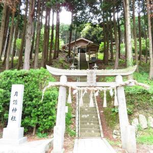 壱岐島 女ひとり旅☆無念の月讀神社、そして道に迷う。