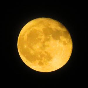 令和元年10月14日 満月。。。