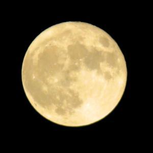 2020 10月2日の満月(Hunter's Moon)。。。