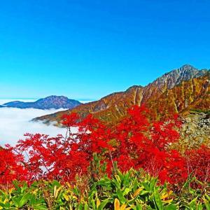 立山連峰 紅葉は麓へと。。。