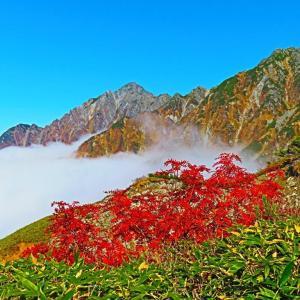 立山連峰 剣岳を背にブロッケン現象?。。。