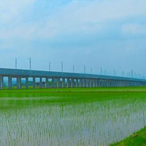 もう架線だけなのに 延伸北陸新幹線。。。