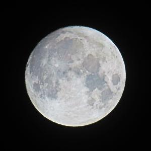 2021 8月の満月(Sturgeon Moon)。。。