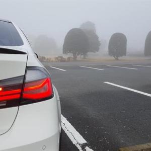 今朝は凄い霧でした