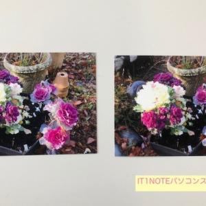 印刷するパソコンによって同じ写真でも仕上がりが違います。