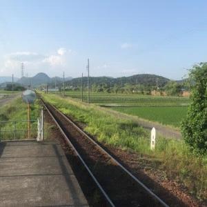 関市役所前から長良川鉄道に乗車 動画付き